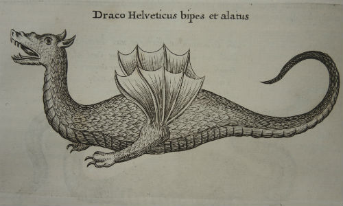 Engraved image of a dragon from an early printed book of the 17th century