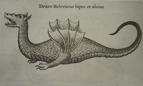 Dragon from Mundus Subterraneus [30 h 10]