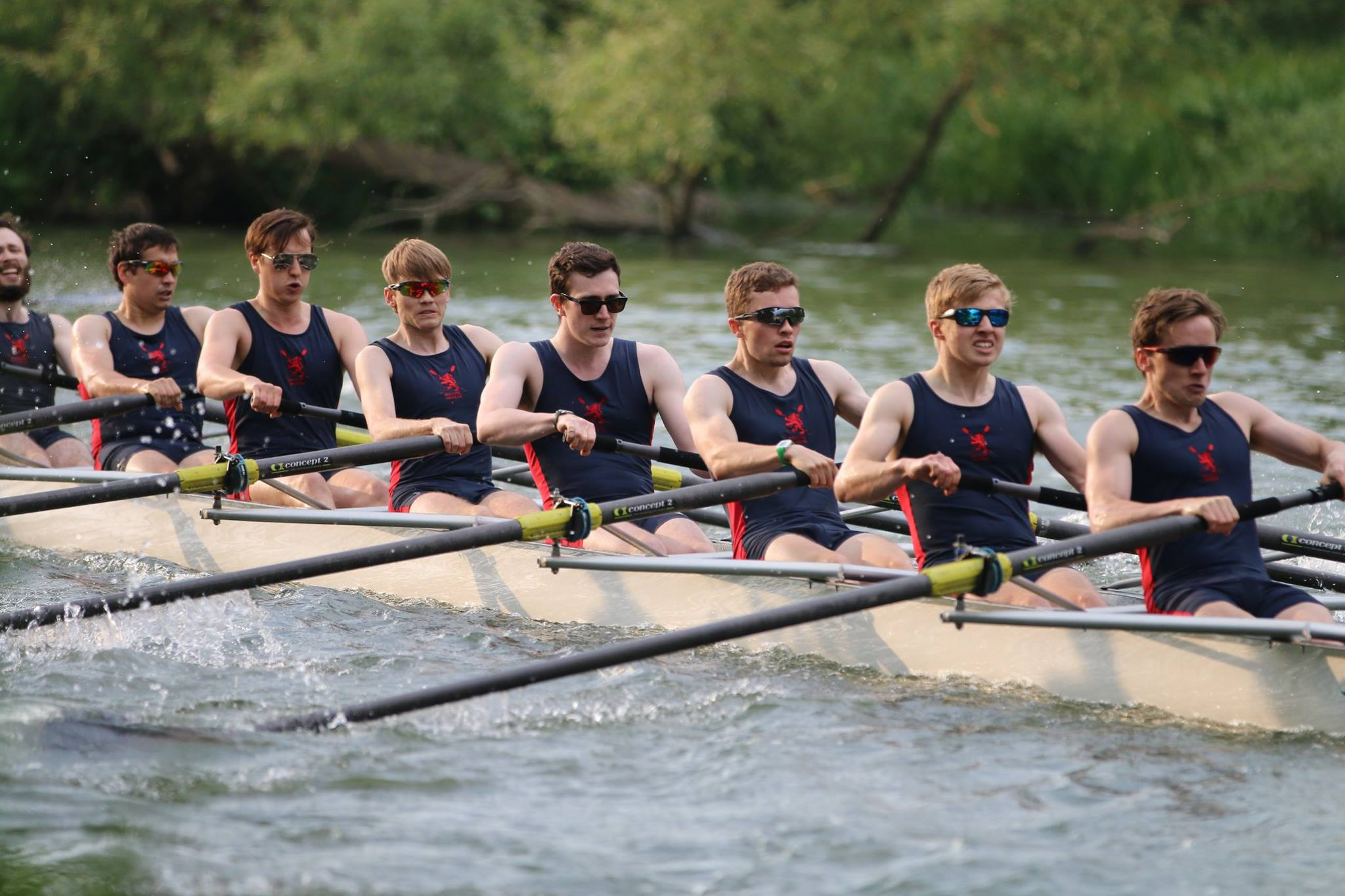 M1 Summer Eights 2018 (photo: Gareth Ardron)